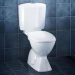 Caroma Cosmo Connector Toilet Suite