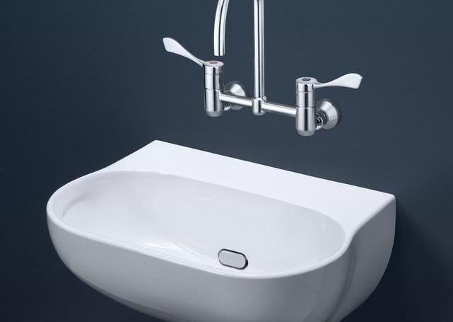 Caroma Clinic 600 Wall Basin